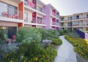 2012-08-20 Saguaro PS Day One 11331